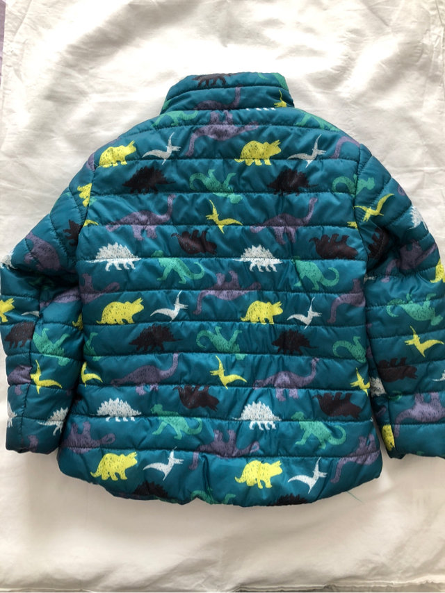 Cat Amp Jack Dinosaur Jacket