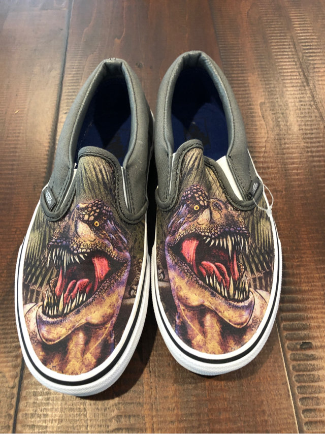 Vans Trex Shoes