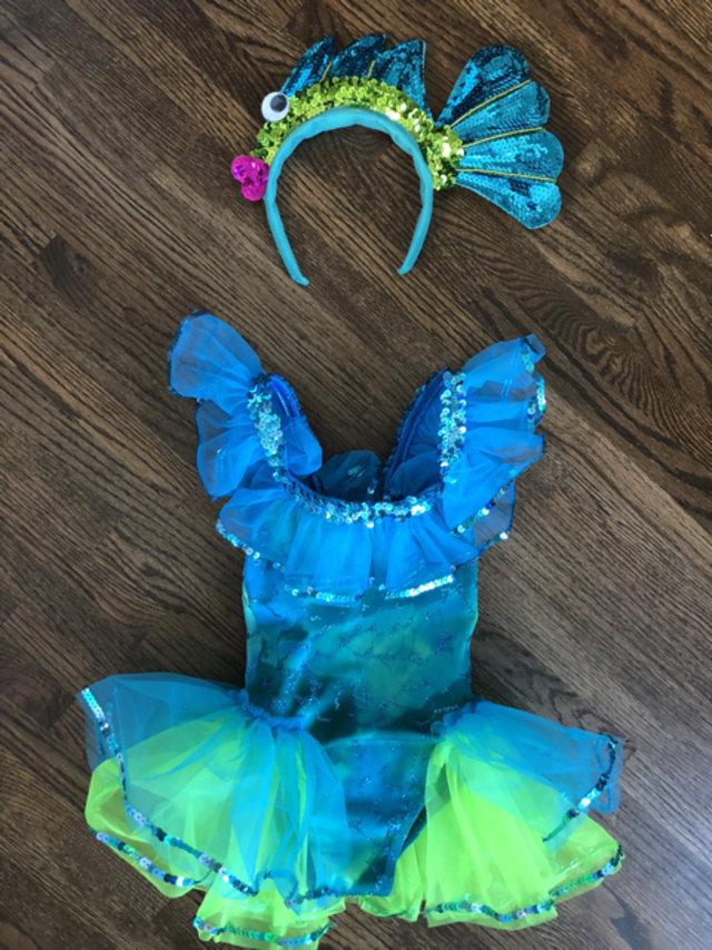 af3b61989a2f Fish Dance Costume